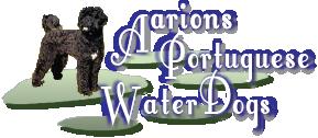 AarionPortugueseWaterDogs.com